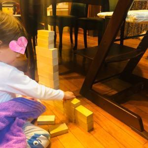 3歳男児 最近の積み木あそび と 表現活動