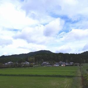日本でした