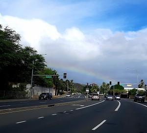 今年は暑いハワイです