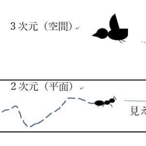 (18)低次元と高次元