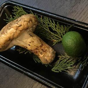 松茸と真鯛の土瓶蒸し