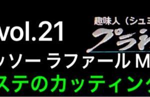 vol.21 ダッソー ラファール M マステのカッティング 続き
