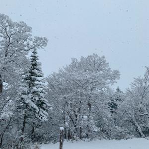 【冬が来た】
