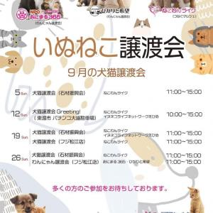 イベント参加のお知らせ!*9/19(日)