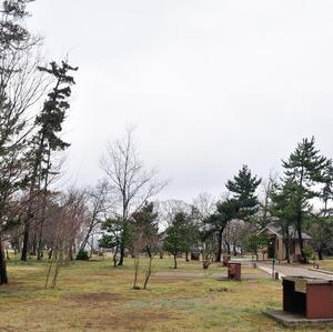 妻のバースデイキャンプ(休暇村越前三国)