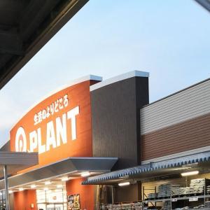 【最大級】PLANT(プラント)の大型店舗ランキング