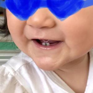 人生初の歯挟まりは、、、