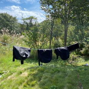 スノーシューの袋洗う
