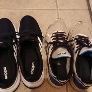 【日々のできごと】探し回ってやっと買った靴なのに…