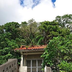 沖縄市登川の住宅地内にある池原村落の拝所『スクブ御嶽』☆