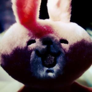 【GoPro】箱根で懐かしの彼らと涙腺崩壊グループライド (2019.12.15)