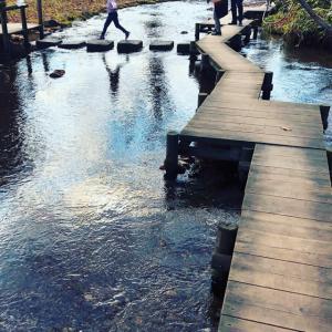 水の美しさと女神が降り立つ泉〜千歳名水ふれあい公園