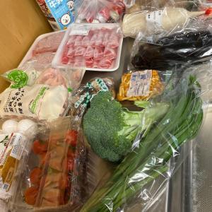 トドックさんから届いたものと、野菜の仕込み