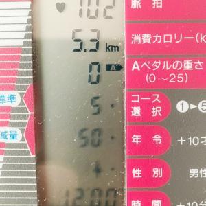漕いだ日限定自転車日記 10/19  マニアックで失礼します