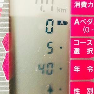 漕いだ日限定自転車日記 12/1 違和感なし