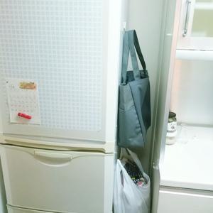大掃除でゴミ箱を洗いたくないからこの捨て方で