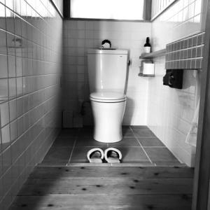 友達にビックリされる豪快(けど効果てきめん♪)な沖縄のトイレ掃除事情