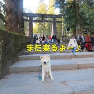 群馬・栃木旅行 日光東照宮