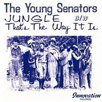 Jungle / The Young Senators