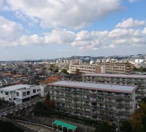 立地適正化計画はニュータウン対策の最適解か?