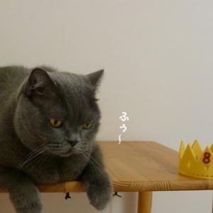 我が家の王様