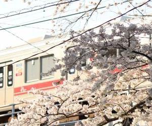 東京急行電鉄が社名を変更し、不動産を中核にした新生「東急」に