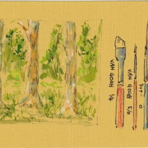 絵はがき 森の練習