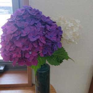 花瓶に触れた。