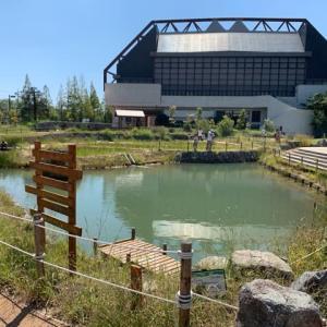 碧南市 碧南海浜水族館 リニューアル後。