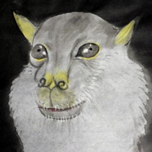 テングコウモリ