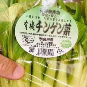 本日の、お野菜。