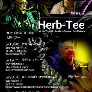 Herb-Tee フライヤー作成いたしました。