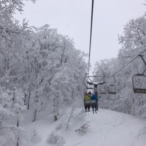 これだから樹氷ができるのね!蔵王温泉スキー場の山頂から滑ってみて納得♪