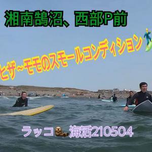 良いことしかない~♪ラッコ海活210504ホーム