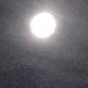 今月末の月と月餅
