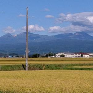 昨日の東川 空気が澄んでます