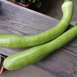 野菜が欲しいって方が