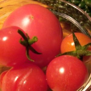 美味しいトマトとゴーヤ、そして、郷愁のアカマンマ