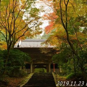 紅葉のお寺巡り 2019