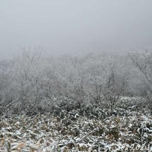 寒風山から伊予富士へ 2019.2月