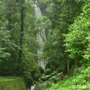 雨中 須崎・樽の滝