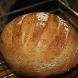 ゆず酵母でソフトハードパン☆神社のお餅つき