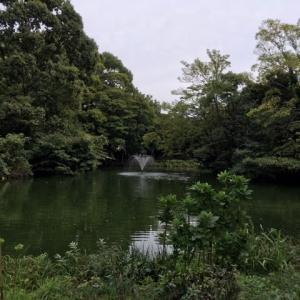 和田掘り公園☆とん汁?で温まる