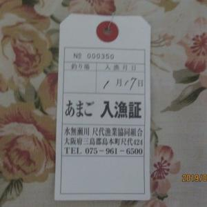 1/17(木) 水無瀬川 アマゴ釣り!!