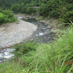 7/25(木) 天川 鮎釣り!!