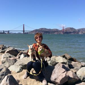 愛犬とサンフランシスコ観光スポットを散歩★クリッシーフィールド