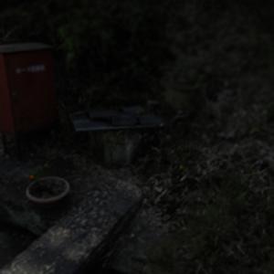 サダ子井戸【彦崎ズームアップ178】|3000本まであと10本。