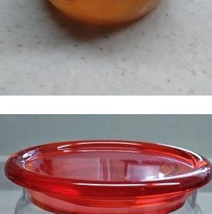 グレープフルーツとセロリの酵素シロップ