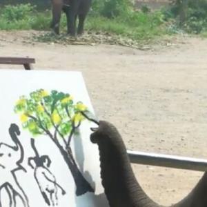 象さんの絵(≧ω≦)