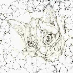 途中経過1 下描き1(花と子猫)